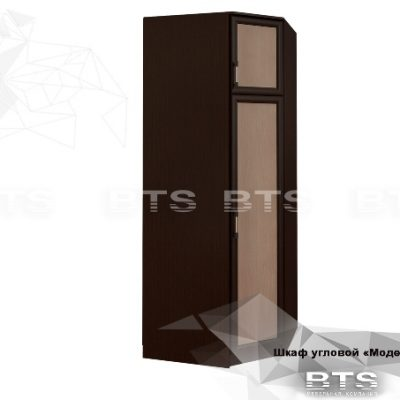 «Модерн» Шкаф угловой (б)