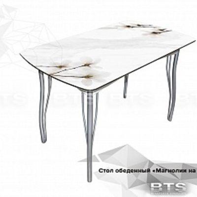 Стол обеденный «Магнолия на мраморе» (б)